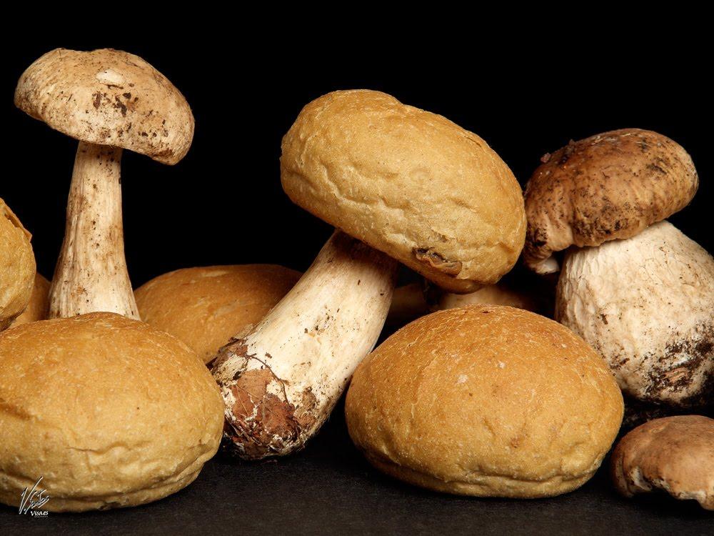 """Pan de setas del horno de """"Ca l'Antic"""" de la Garriga"""